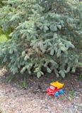 Coche del juguete debajo del pino-árbol Fotos de archivo