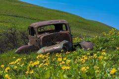 Coche del vintage en un campo de flores salvajes Fotografía de archivo libre de regalías
