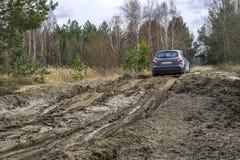 Coche en el camino de tierra del pantano De viaje por carretera Imagen de archivo libre de regalías