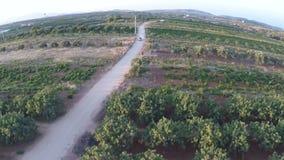 Coche en un camino de tierra entre los campos 4 almacen de video