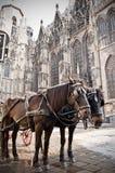 Coche en Viena Fotos de archivo libres de regalías