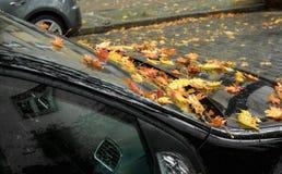 Coche negro por completo de hojas en otoño Fotos de archivo