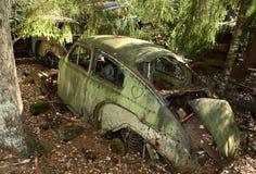 Coche retro en bosque Fotos de archivo libres de regalías