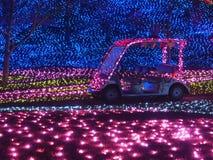 Coche sin el conductor e iluminaciones del invierno en parque japonés de la flor foto de archivo