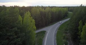 Coche superior de la visión en la carretera que serpentea entre bosque conífero metrajes