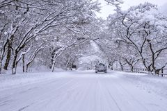 Coche y nieve que cae en invierno en el camino forestal con mucha nieve Foto de archivo