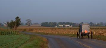 Cochecillo de Amish de la mañana Fotos de archivo libres de regalías