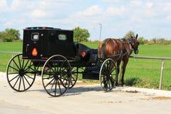 Cochecillo de Amish en descanso Imagen de archivo libre de regalías