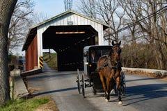 Cochecillo de Amish en el puente cubierto Imagen de archivo libre de regalías