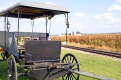 Cochecillo traído por caballo de Amish fotos de archivo libres de regalías