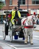 Cochecillo traído por caballo en Boston fotografía de archivo libre de regalías
