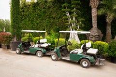 Cochecillos del golf Imágenes de archivo libres de regalías