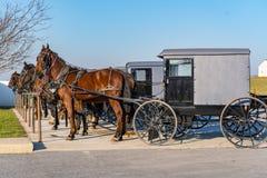 Cochecillos y caballos de Amish fotografía de archivo libre de regalías