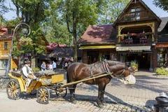 Cocheiro com seu cavalo aproveitado Imagem de Stock Royalty Free