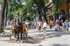 Cocheiro com seu cavalo no estreptococo de Krupowki Imagem de Stock