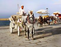 Cocheiro Horse Carriage Ride Fotografia de Stock