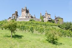 Cochem castle in Germany, surrounded by vineyards Royalty Free Stock Image