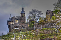 Cochem castle tower Royalty Free Stock Images