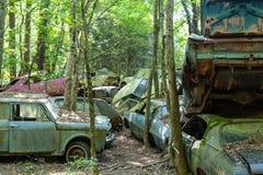 Coches arruinados viejos en bosque Imagen de archivo