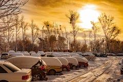 Coches bajo nieve Foto de archivo libre de regalías