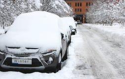Coches blancos de los árboles del invierno de la nieve Fotografía de archivo