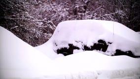 Coches cubiertos con nieve en un área residencial de Moscú almacen de video