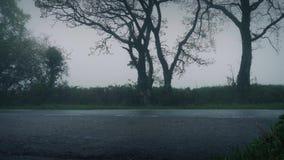 Coches en el camino rural en niebla y lluvia metrajes