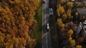 Coches entre los árboles del otoño de la opinión de ojo de pájaros Siga el tiro del autobús metrajes