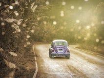 Coches más viejos de Volkswagen que se mueven a lo largo de una trayectoria en un bosque de la montaña en el parque nacional natu Imagen de archivo