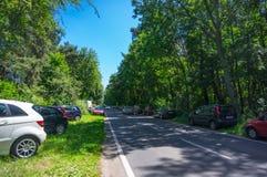 Coches parqueados bosque Imagen de archivo