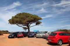 Coches que estacionan en la playa Imágenes de archivo libres de regalías