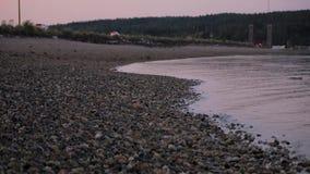 Coches a través de la playa rosada