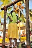 Cochin Carnaval 2015 Stock Fotografie