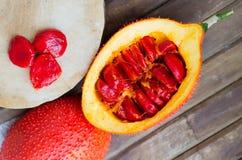 Cochinchin kalebassfrukt (den bittra gurkan för våren, behandla som ett barn Jackfruit S Royaltyfri Fotografi