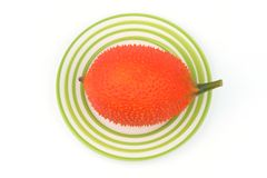 Cochinchinensis del Momordica, un aislante asiático suroriental de la fruta en blanco Imágenes de archivo libres de regalías