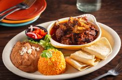 Cochinita pibil Entree with Side Orders. Mexican Cochinita pibil Entree with rice, refried beans and salsa at a local restaurant stock photos