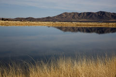 Cochise Lakes, Twin Lakes near Willcox Stock Image