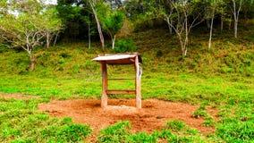 Cocho ha fatto di legno per mettere l'alimento per il bestiame immagini stock