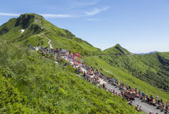 Cochonou Caravan - Tour de France 2016 Royalty Free Stock Photography