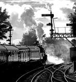 Cocido al vapor al vapor apagado Fotografía de archivo