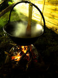 Cocido al vapor de la caldera al vapor Imagen de archivo