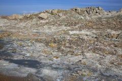 Cocido al vapor de los potes del fango al vapor en el área geotérmica de Namaskard Fotografía de archivo libre de regalías