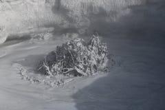 Cocido al vapor de los potes del fango al vapor en el área geotérmica de Namaskard Imagen de archivo