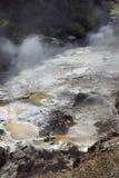 Cocido al vapor de zonas activas al vapor a lo largo del río de Waimangu Fotografía de archivo