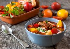 Cocido húngaro húngaro tradicional del bograch del plato Fotos de archivo libres de regalías