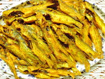 Cocina bengalí - pescados de Tengra o fritada fritos del siluro Imagenes de archivo
