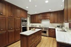 Cocina en hogar de lujo Fotografía de archivo