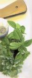 Cocina herbaria Foto de archivo