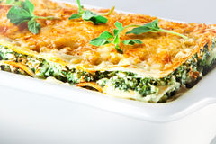 Cocina italiana. Lasagna de la espinaca con albahaca. Macro Fotos de archivo