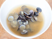 Cocina japonesa, sopa de miso de la almeja del shijimi fotografía de archivo libre de regalías
